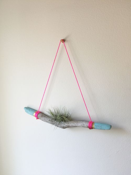 Aimee DIY Air Plant Hanger